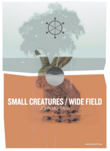 Small Creatures / Wide Field
